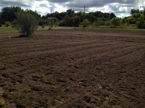 New Lawn Prep